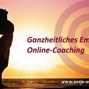 Online-Coaching (60min)