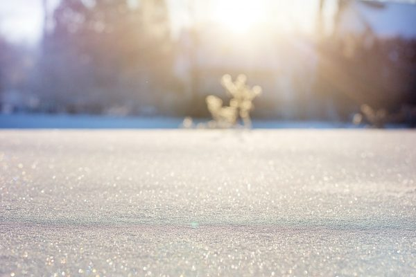 Urlaubspaue Spaziergang im Neuschnee